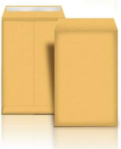 NEW AmazonBasics Catalog Mailing Envelopes, Peel  Seal, 9x12 Inch, Brown Kraft, 250-Pack - AMZA31 Condtion: (4720947)... Mississauga / Peel Region Toronto (GTA) Preview