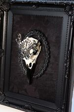 Macabre Gothic Victorian ornate jewellery REAL crow skull picture taxidermy