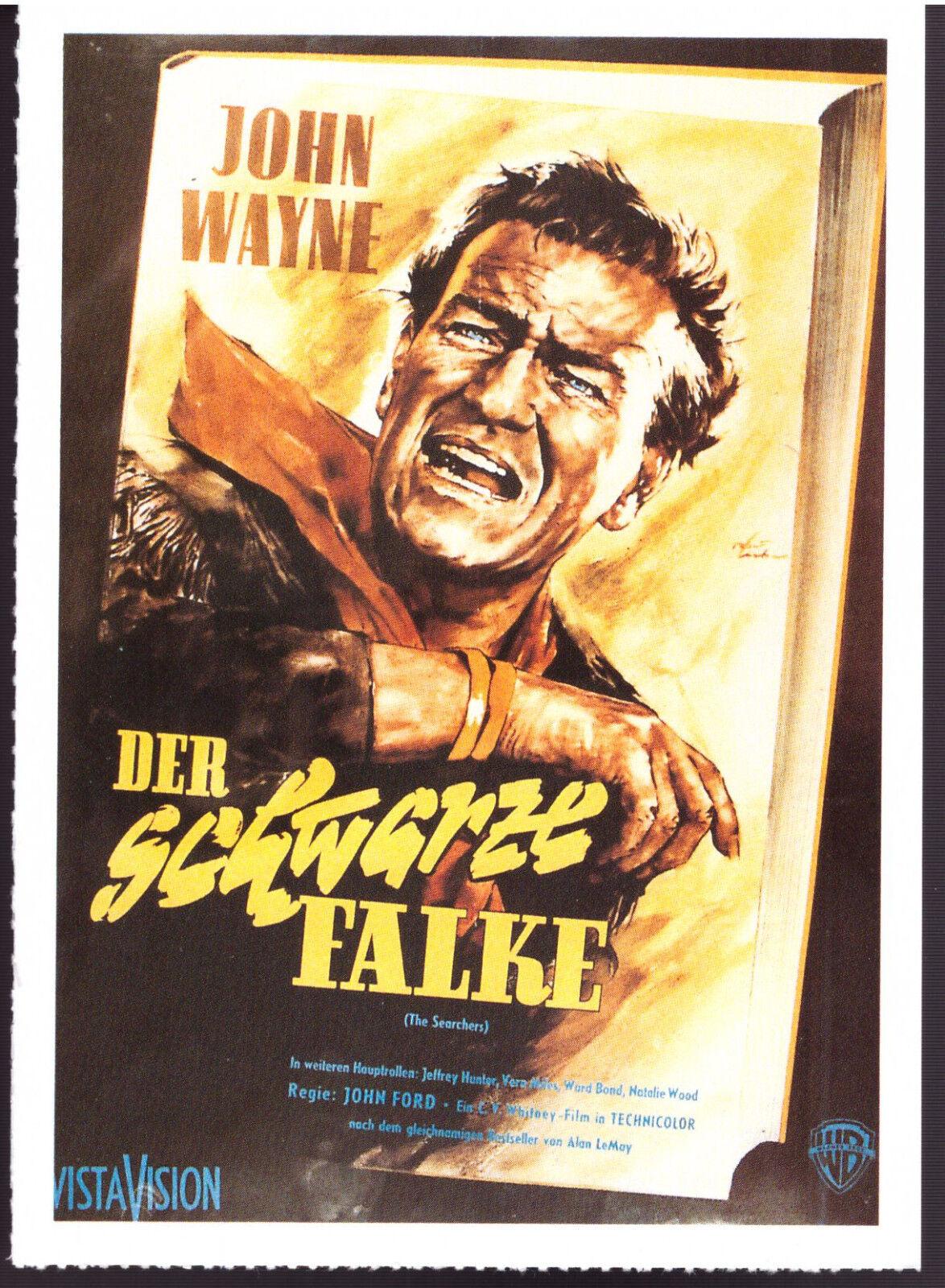 Der Schwarze Falke Film
