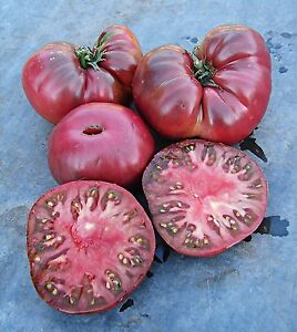 TOMATO-BLACK-GIANT-EARLY-FANTASTIC-FLAVOR-ORGANIC-HEIRLOOM-SEEDS-COMBINED-SHIP