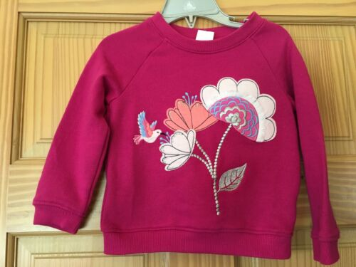 NWT Gymboree Bright Days Ahead Girl Toddler Sweatshirt Top SZ 2T,3T