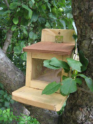 Eichhörnchen Futterbude Eichhörnchenfutter Futterhaus Futtersilo 21 x 14 x 20 cm