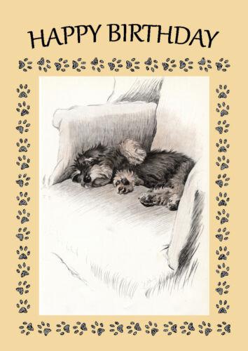 DANDIE DINMONT TERRIER DOG ON CHAIR BIRTHDAY GREETINGS NOTE CARD