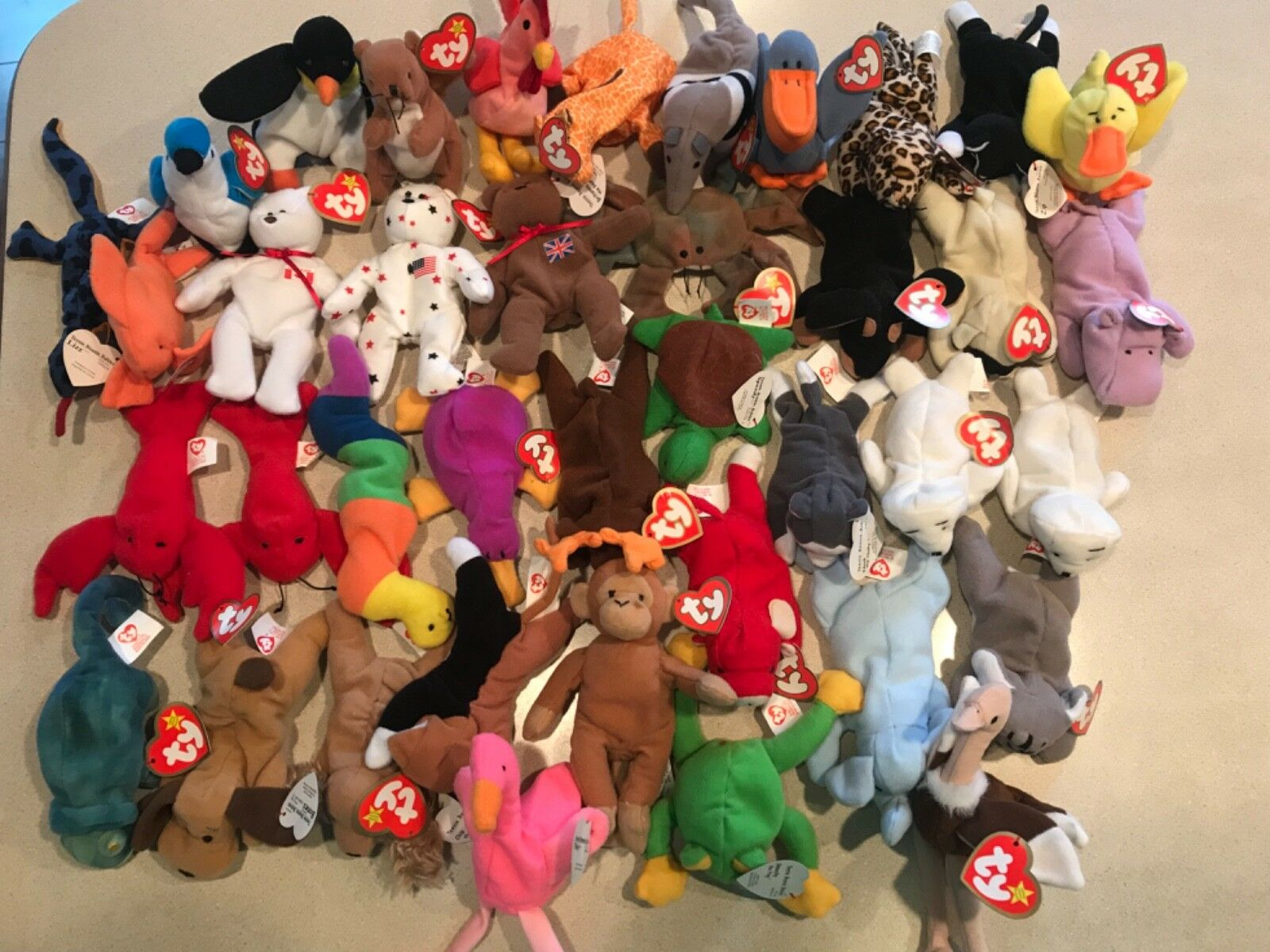 367f941bfe9 Huge Beanie Babies collection including Teenie Beanie Babies ...
