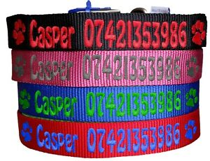 Personalised-ID-Dog-Collar-XXS-XS-S-M-L-XL-4-colours-Name-and-Number-UK-Stock