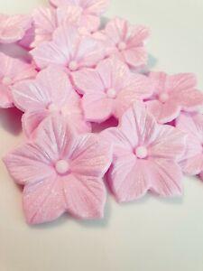 12-Edible-Pastel-Pink-Sugar-Petunia-Flowers-Cake-Decorations-Cupcake-Topper