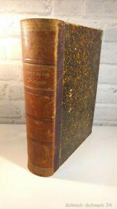 Manuel-des-Comparative-anatomie-de-la-animaux-de-compagnie-10-edition-1903-30188