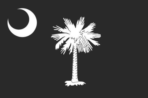 South Carolina SC State Flag Decal Vinyl Camper Truck Window Sticker Subdued VAR