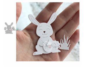 "CUTTING DIES  Easter Rabbit /""some bunny/"" METAL DIY Scrapbook PAPER Embossing"