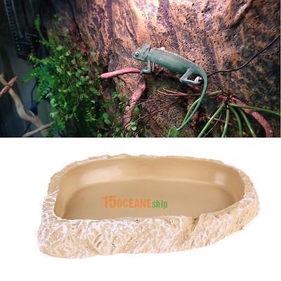 NEW Food Water Dish Bowl Feeder Terrarium Decor for Reptile Tortoise Snake Liza