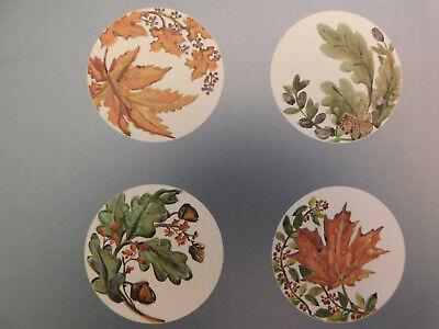 Pottery Barn Watercolor Leaves Salad Plates Set//4 NIB