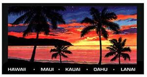 Hawaiian Icons Large Beach Towel Black Rainbow Surf Sun Ukulele Hawaii Words NIB