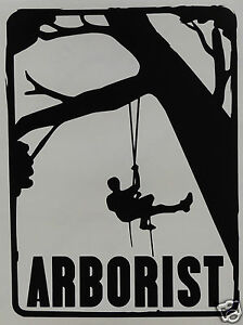 LARGE 16 x 11.5 INCH ORIGINAL ARBORIST Sticker//Decal Tree Surgery//Forestry use.