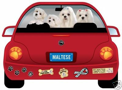 MALTESE PUPMOBILE  car magnet