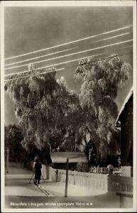 Bärenfels Erzgebirge alte Ansichtskarte ~1930/40 Dorfpartie im Winter Langläufer