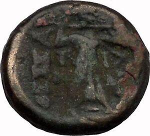 LARISSA-Thessaly-THESSALIAN-LEAGUE-196BC-Athena-Apollo-OWL-Greek-Coin-i43499