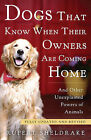 Dogs That Know When Their Owners Are Coming Home: And Other Unexplained Powers of Animals by Rupert Sheldrake (Paperback / softback)
