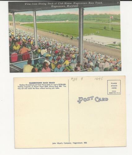 HAGERSTOWN MD Mint New//Old Stock Free Ship 2 CARDS - Per Order HORSE RACING