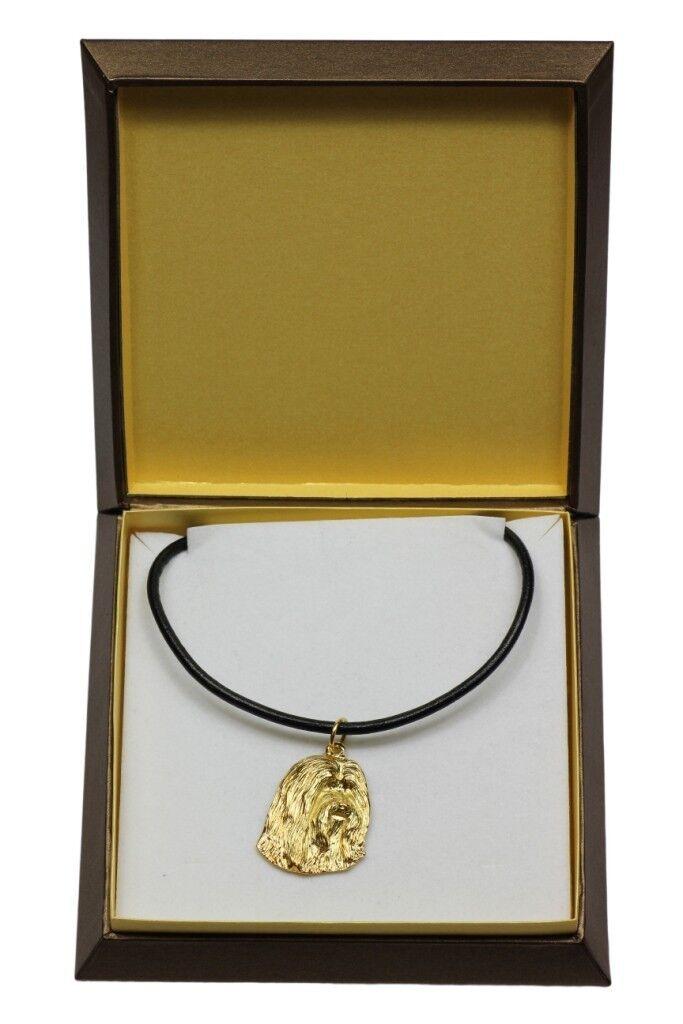 Bearded Collie  collier doré avec un  en dans une boîte, Art Dog FR