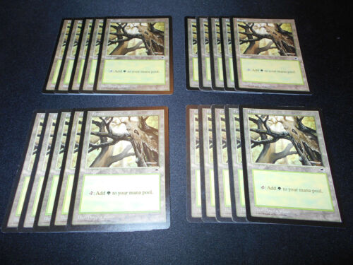 Magic MTG FTG Forest SAME ART MP-NM Condition 20 Basic Land Tempest