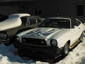 1978 MUSTANG KING COBRA ,T TOPS,302 ,4SPD CAR,143000 ORIG MILES!