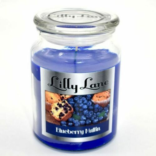 Lilly Lane 18oz Large Scented Candle Glass Jar Fragrance Aromatic Home Therapy