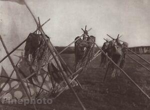1900/72 Photo Gravure NATIVE AMERICAN INDIAN Spiritual Blood Tribe CURTIS 11x14