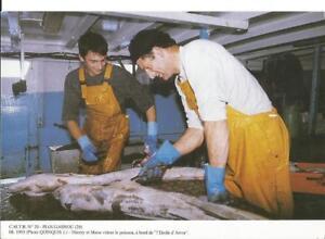 PLOUGASNOU-29-Pecheurs-vident-le-poisson-a-bord-de-034-L-039-Etoile-d-039-Arvor-034-1993