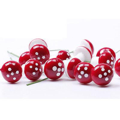 10Pcs Red Mini Mushroom Garden Ornament Miniature Plant Pots Fairy DIY Dollhouse