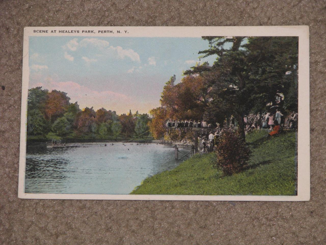 Scene at Healeys Park, Perth, N.Y., unused vintage card
