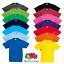Fruit-of-the-loom-enfants-t-shirt-tee-enfants-garcons-filles-ecole-age-3-15-couleurs miniature 1