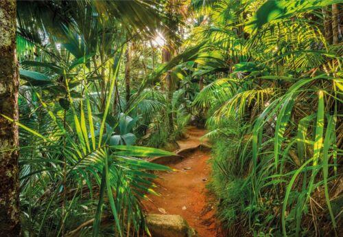 inkl Kleister m²//9,16€ Fototapete Jungle Trail 368 x 254 cm Urwald