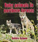 Baby Animals in Northern Forests by Bobbie Kalman (Hardback, 2013)