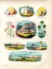 ANTIQUE BIBLE COLOUR PLATES - SAMARITAN COINS, RED SEA, BULLRUSHES & TABERNACLE