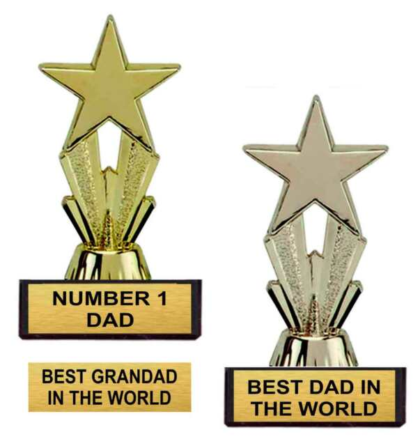 FATHERS DAY STAR TROPHY GIFT BEST DAD IN THE WORLD BIRTHDAY GIFT GRANDAD
