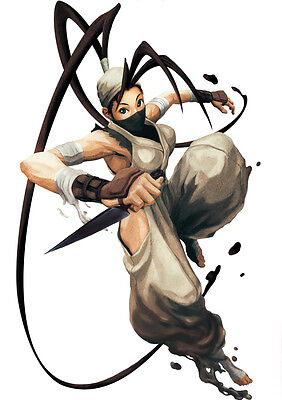 STICKER AUTOCOLLANT POSTER A4 JEUX VIDEO STREET FIGHTER 4 PERSONNAGE VEGA .