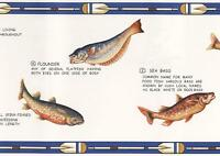 Canoe Paddles Fish Blue White Cream Lodge Man Cave Fishing Wall Wallpaper Border