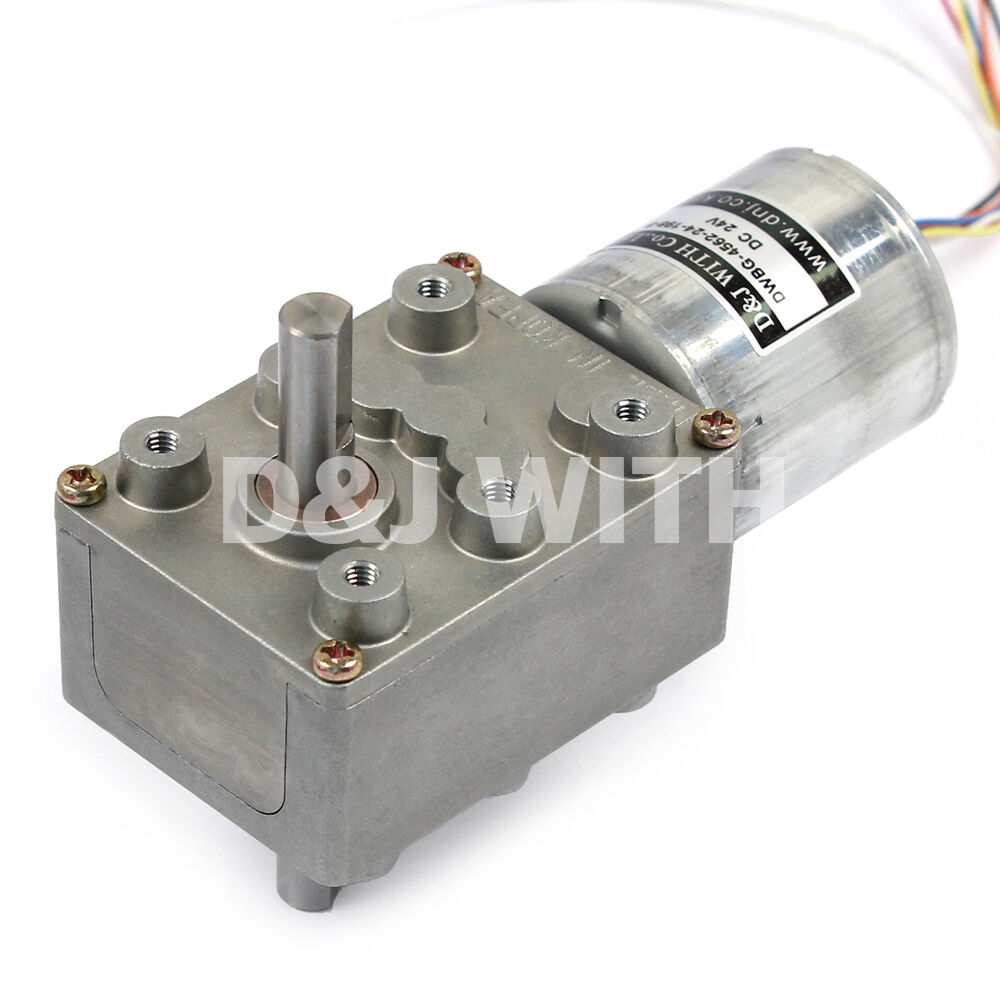 24V DC Worm Gear Motor 25RPM 10W Bronze Gear Double shaft  BLDC Motor D&J WITH