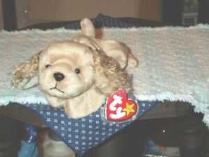 5506d620c9c TY Beanie Baby Babies dog Spunky Cocker Spaniel 1-14-1997 retired ...
