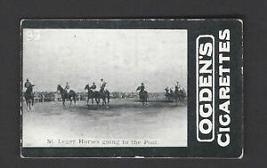OGDENS-TABS-GENERAL-INTEREST-D-99-ST-LEGER-HORSES-GOING-TO-THE-POST