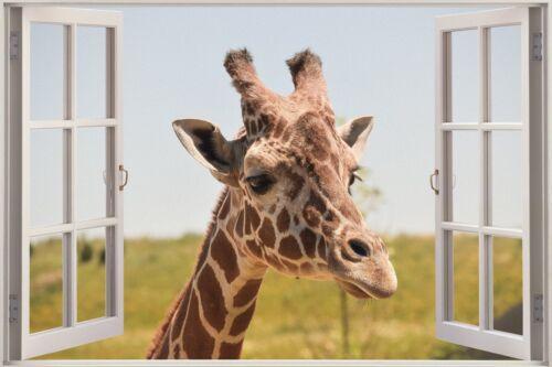 3D Effect Window View Giraffe Africa Animal Wall Sticker Poster M1-411