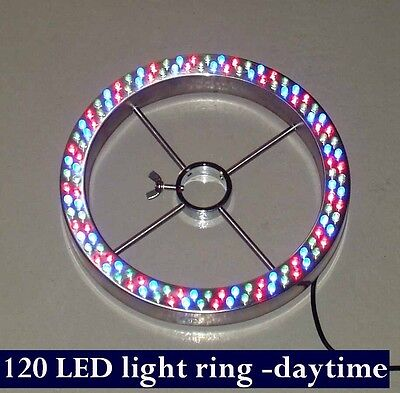 Programmable Color Changing 12 LED Multi-Color Pond /& Garden Light