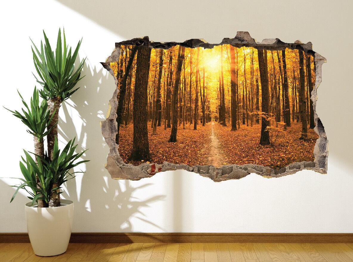 Schöne Herbstlich Sonnenuntergang in The Forest Wand Sticker Wandbild (46794901)
