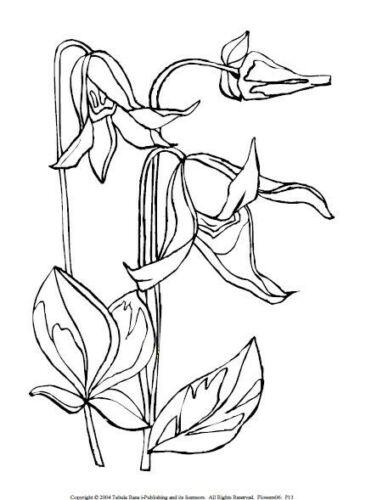 Basteln Kreativitat Malbuch 53 Malvorlagen Blumen Nr 6 Ausmalbilder Als Pdf Kinder Malen Kamadojoe