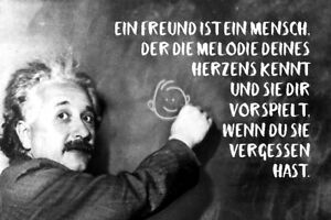 Albert Einstein Table Saying 28 Tin Sign Shield Arched 20 X 30 CM