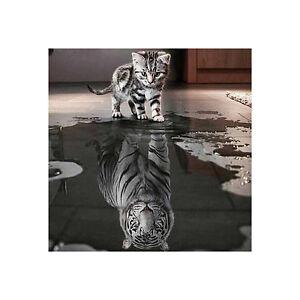 5D-DIY-Diamant-Painting-Katze-und-Tiger-Stickpackung-Kreuzsticken-Kunst-Wandbild
