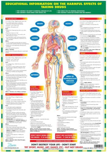 Educational Posters Anti Smoking Alcohol Drugs Sexual Health Set Of 4 Charts