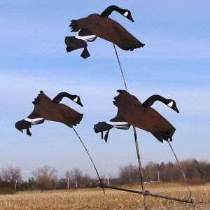 GOOSE-TREE-SYSTEM-FLYING-CANADA-GOOSE-DECOYS