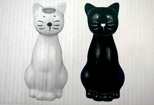 Luftbefeuchter katzen