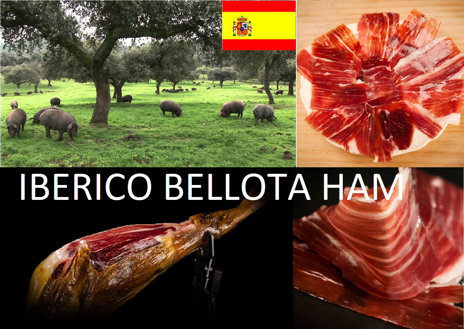 SPANISH IBERICO BELLOTA HAM. SPANISH FOOD. 340 GRAMS APPROX. uk